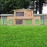 Zooprimus Kaninchenstall 2 XXL Hasenkäfig - DR. Hase - Stall für Außenbereich (für Kleintiere: Hasen, Kaninchen, Meerschweinchen usw.)