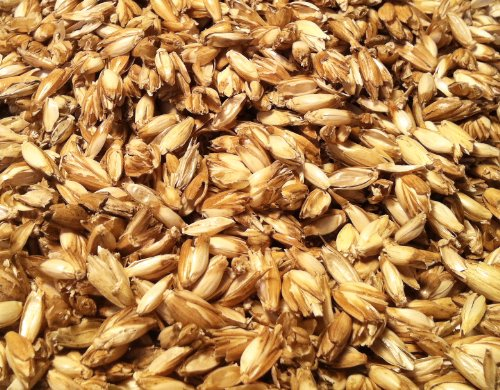 Natur 1 KG Bio Dinkelspelzen Dinkelspreu