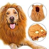 Bliplus Cane Pet Costume, Grande Medio Cane Regolabile Parrucca leone con Orecchie per Halloween Natale Partito Vestire