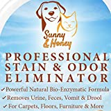 Pet Stain & Odor Miracle - Enzyme Cleane...