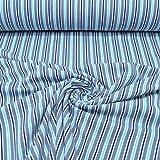 MAGAM-Stoffe ''Olivia'' Streifen in 6 Farben | Jersey-Stoff Öko-Tex Qualität | Meterware ab 50cm | OX-10-8 (2. Rauchblau Türkis)