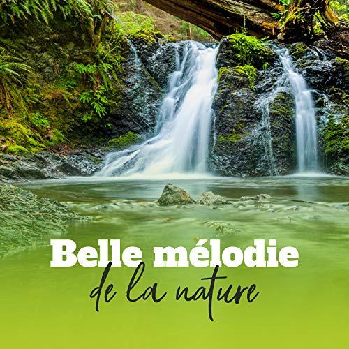 Belle mélodie de la nature: Musique pour l'esprit, Le corps et l'âme