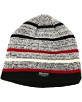 Mens Thermal Thinsulate Striped Winter/Ski Beanie Hat (3M 40g)
