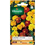 Vilmorin - Sachet graines Oeillet d'inde double nain varié