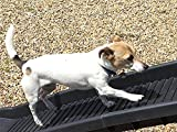 Bild: new model pet ramp with improved walking surface