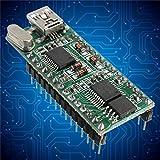 Calli WT588D-U-32M Voice-Sound-Modul 5V Mini -USB-Schnittstelle Sound-Modul für Arduino