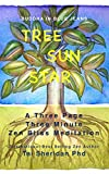 Tree Sun Star: Three Minutes of Zen Bliss