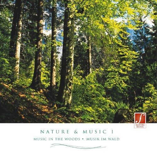 : Entspannungsmusik mit Naturgeräuschen aus dem Wald. ()