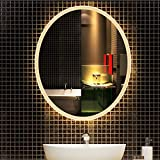 DELM Lumière Blanche/lumière Chaude, Miroir de Salle de Bains,Miroir Mural...