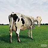 Atom Heart Mother Is on the