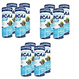 AllNutrition BCAA Xtra Drink 250ml Dose Zero Sugar Aminosäuren SCHWARZE JOHANNISBEERE BCAA-DRINK (12)