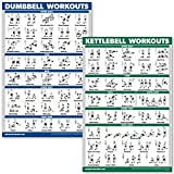 QuickFit Kurzhanteltraining und Kugelhantel-Übungsposter-Set - laminiertes 2 Diagramm-Set -...