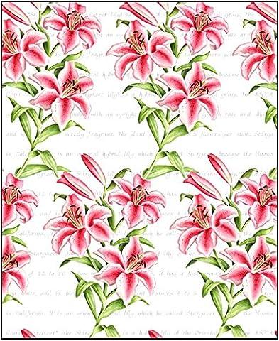 Little ronflement Gifts Cadeau:–Simple Design Lys oriental feuille (70x 50cm)