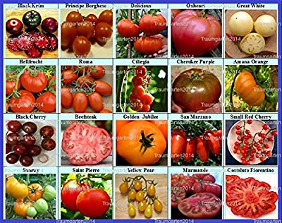 Tomaten Set 1 : 20 Sorten Mix Paket Mischung Tomatensamen Fleischtomaten Cherrytomaten Samen Saatgut