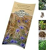 Saatgut Set: 'Pflanzen der Liebe', 3 Liebeskräuter als Samen in schöner Geschenk-Verpackung
