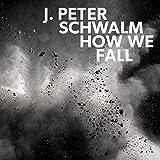 How We Fall (feat. Eivind Aarset, Tim Harries)