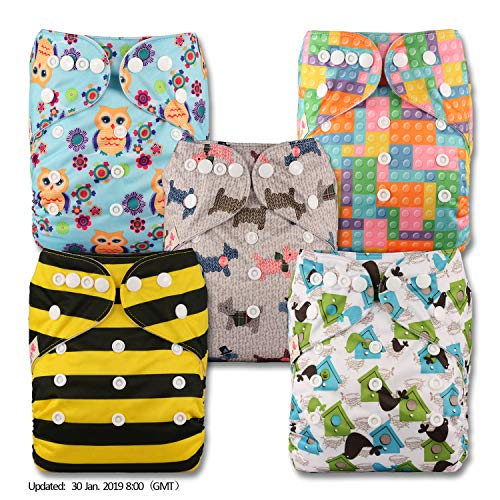 Reusable Pocket Cloth Nappy Set of 1 Littles /& Bloomz Pattern 38 with 1 Bamboo Insert Fastener: Hook-Loop