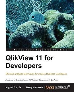 QlikView 11 for Developers von [García, Miguel, Barry Harmsen]