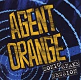 Songtexte von Agent Orange - Sonic Snake Session