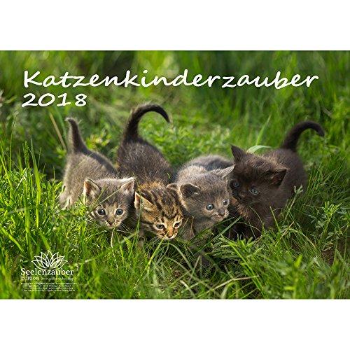 Premium Kalender 2018 · DIN A3 · Katzenkinderzauber · Katzenkinder · Katzenbabys · Katzen · Stubentiger · Tier · Edition Seelenzauber
