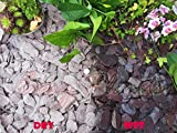 10KG Gravel Chippings Stone Slate Deter Weed Garden Patio Pathway Plant Topping - 40mm Plum Slate - Easy Plants - amazon.co.uk