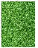 Gras rasen Bedruckt Zucker zuckerguss blatt (ca. 7.5