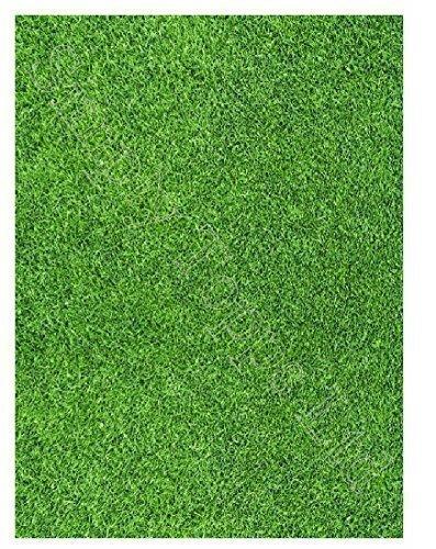 """Herbe pelouse imprimé sucre feuille glaçage (environ 7.5"""" x 5) décoration gâteau - Coupe comestible formes de la avec loisirs créatifs couteau ou ciseaux à coller sur votre"""