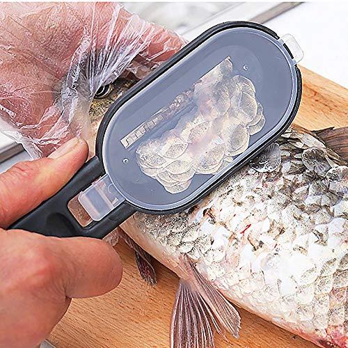 huichang Fischentschupper mit Schuppenauffangschale, Rostfreier Edelstahl, 20x5.5cm (Schwarz)