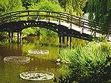 Artland Poster oder Leinwand-Bild fertig aufgespannt auf Keilrahmen mit Motiv Unknown Japanische Gartenbrücke in Wroclaw, Polen Landschaften Garten See Fotografie Grün...