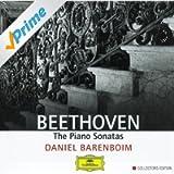 Beethoven: The Piano Sonatas (9 CD's)