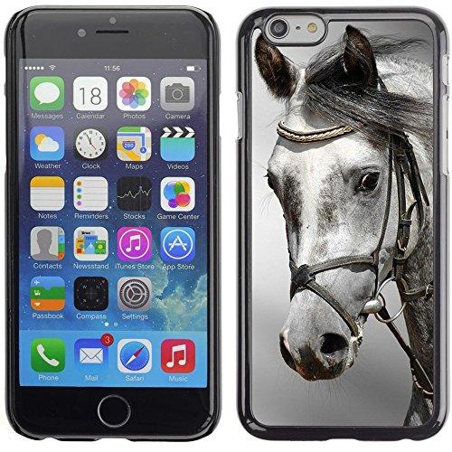 Graphic4You Pferd Tier Design Harte Hülle Case Tasche Schutzhülle für Apple iPhone 6 Plus / 6S Plus Design #1