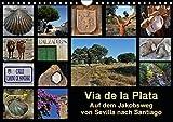 Via de la Plata - auf dem Jakobsweg von Sevilla nach Santiago (Wandkalender 2016 DIN A4 quer): Pilgern auf einer alten Römerstraße - 1000 km zu Fuß ... (Monatskalender, 14 Seiten) (CALVENDO Natur) - Rina B.