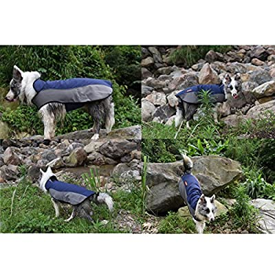 BLACKDOGGY Waterproof Dog Jacket Soft & Cozy Fleece Lining Dog Vest Velcro on Neck & Belly to adjust Pet Clothes Button Hole to Connect Leash Reflective Piping and Binding Visible at Night Great for Outdoor & Cold Weather