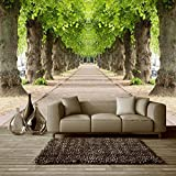 #6: Mural Wallpaper Forest Road 3D Wallpaper Available in All Size for Living room, Bed Rooms, TV Background, Size : ( Height 3.10 x Width 5.9) ft