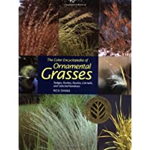 The Color Encyclopedia of Ornamental Grasses: Sedges, Rushes, Restios, Cat-Tails and Selected Bamboos by Rick Darke (1999-02-01)