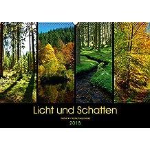 Licht und Schatten - Herbst im Südschwarzwald (Wandkalender 2018 DIN A2 quer): Licht- und Farbspiele im herbstlichen Wald (Monatskalender, 14 Seiten ) (CALVENDO Natur)