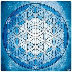 Mandalas - La Flor De La Vida, Elemento Agua Vinilo Decorativo Pegatina Autoadhesivo (9 x 9cm)