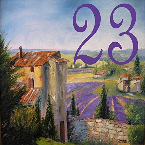Azul'Decor35 Numéro de rue original sur-mesure en faience – Choisissez votre numéroet la taille de votre plaque de rue !