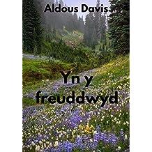 Yn y freuddwyd (Welsh Edition)