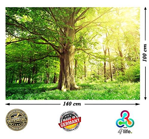 PMP-4life Wandbild Baum in Blumenwiese Natur HD XXL Poster 140cm x 100cm Hochauflösende Wanddekoration Bild für Wandgestaltung | Fotoposter Landschaft...