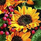 40 Cocktailservietten Herbstgruß Sonnenblume (Autumn greetings)1/4 gefalzt, 3-lagig Größe offen: 25x25