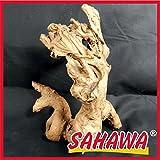 SAHAWA Wurzel, Mangrovenwurzel, Mangrove, Wurzel, Deko,Aquarium,Terrarium