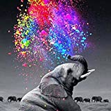 DIY 5D Diamond Painting, Crystal Rhinestone Diamond Embroidery Paintings Pictures Arts Craft for Home Decoration Colorful Star Gray Elephant 11.8 X 15.7 Inch