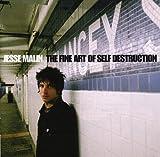 The Fine Art of Self Destructi