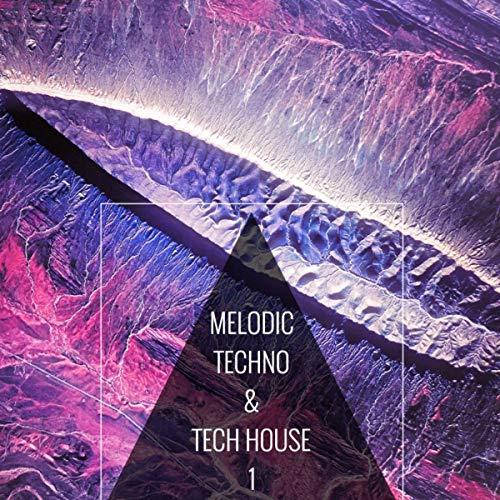 Melodic Techno & Tech House 1