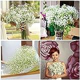 ILOVEDIY 20 Pcs Bouquet de Gypsophila Fleurs Artificielles Mariage Demoiselle D'honneur Decoration Maison Deco Blanche (20pcs)