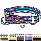 Blueberry Pet 1,5cm S 3M Reflektierendes Bunt Gestreiftes Violett und Himmelblaue Hundehalsband für Kleine Hunde