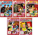 Bibi & Tina - DVD 16-20 zur Zeichentrick TV-Serie im Set - Deutsche Originalware [5 DVDs]