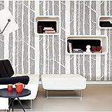 Moderne Tapete Einfach Silberpappel Vlies - Abstrakter Baumstamm Birkenwald Hintergrund Tapete,White-OneSize