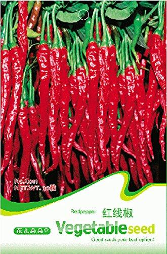 Graines Red Hot Organic Cayenne long Slim Chili Pepper, emballage d'origine, 30 graines / Pack, Heirloom Légumes C011